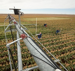 predictive farm management and analytics market, esperto market research, www.espertomarketresearch.com
